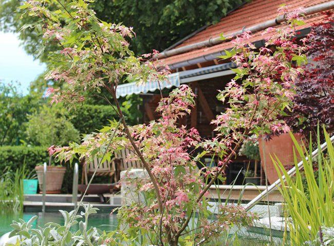 Gartengestaltung Geretsried