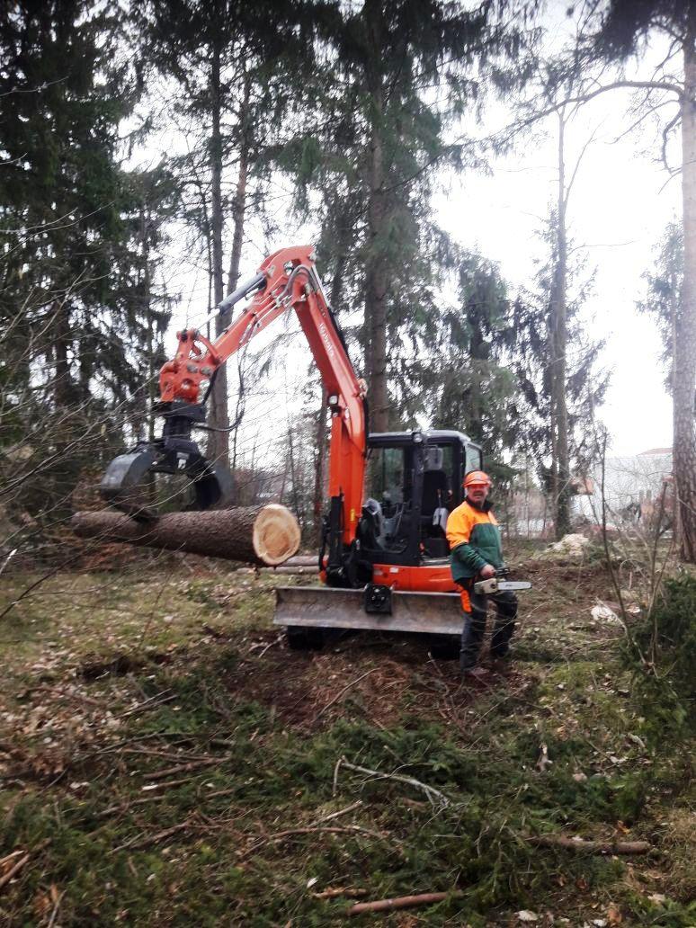 Baumfällung Geretsried